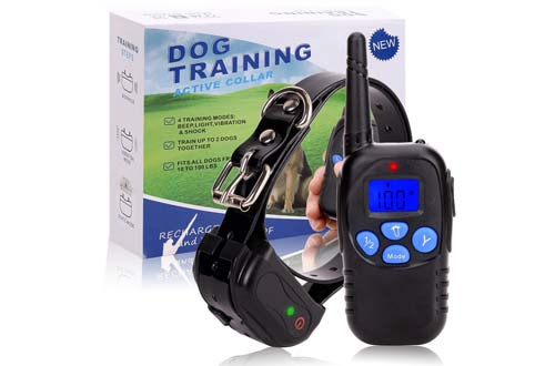 Dog Training Shock Collar
