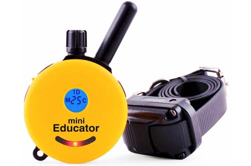 E-Collar Remote Dog Training Collar
