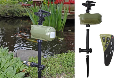 pray Away Hydro-Remote Animal Repellent Sprinkler