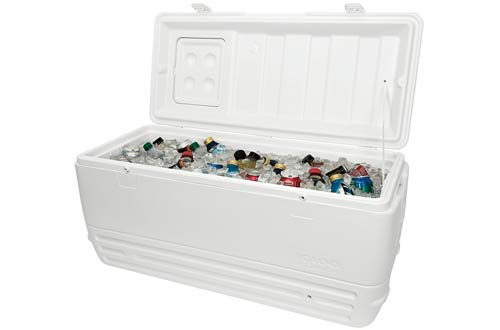 Igloo Quick Cooler