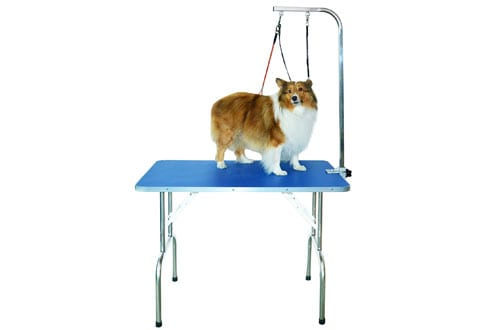 SHELANDY Professional Grooming Pet Table