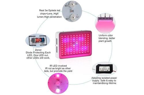 ColoFocus 1000W LED Grow Light, Double Chips Indoor LED Plant Grow Light Kit