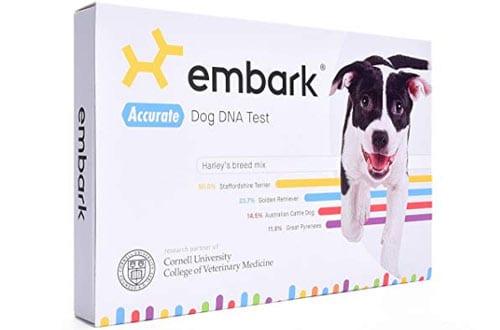 Dog DNA Tests