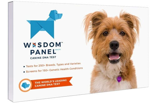 Wisdom Panel Health Canine DNA Test