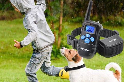 Electric Dog Training Collars