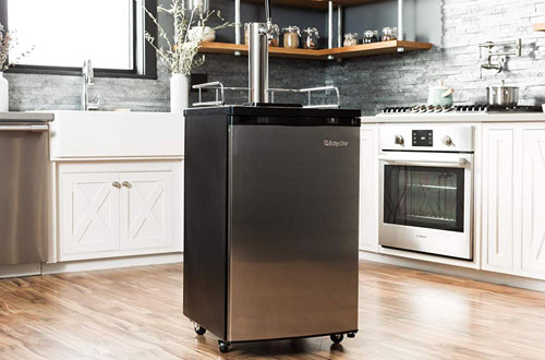 Keg Refrigerators