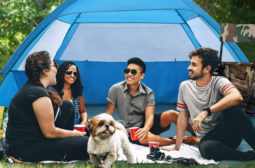 VenustasLightweight and Easy BeachSun Shelter for3-4 Person