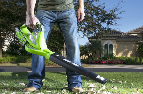 Greenworks 24252 40V Variable Speed Cordless Battery Leaf Blower