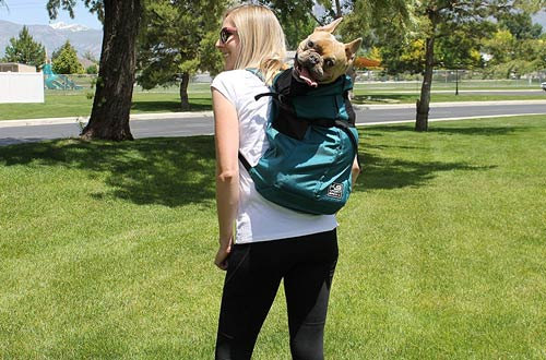 K9 Sport Sack Small and Large Dog Carrier Backpacks