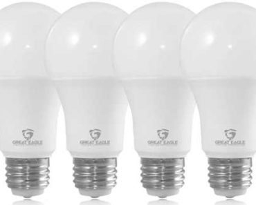 3 Way LED Bulbs