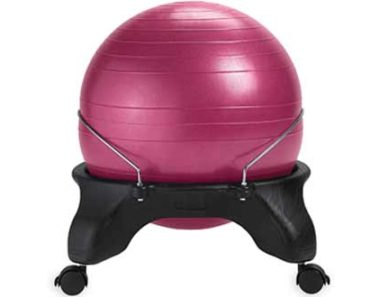 Gaiam Balance Ball Chair with Air Pump